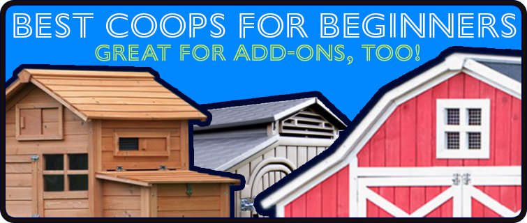 Best coops for beginners and add-ons