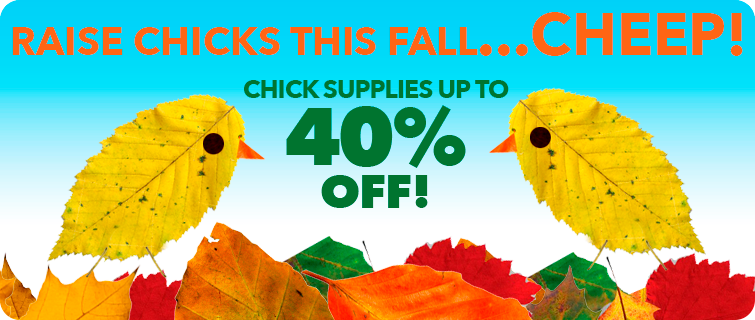 Chick Supply Fall Sale