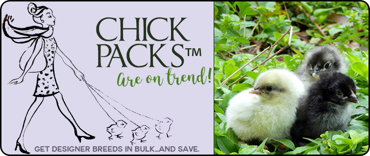 Chick Packs