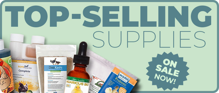 best-selling supplies on sale now