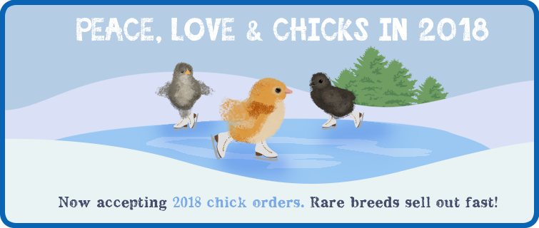 2018 Chicks Love Peace & Chicks