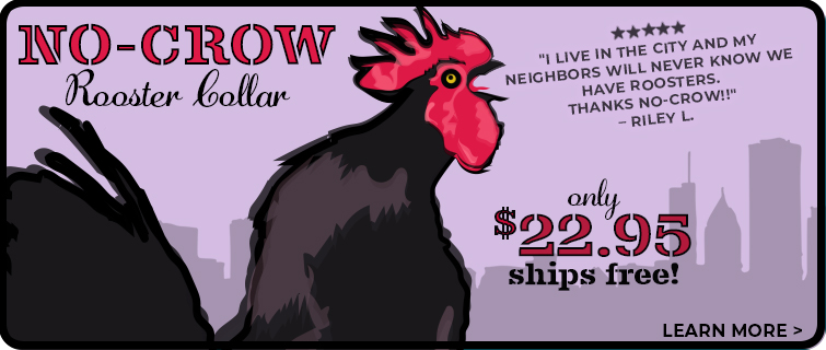 No Crow Rooster Collar (new)