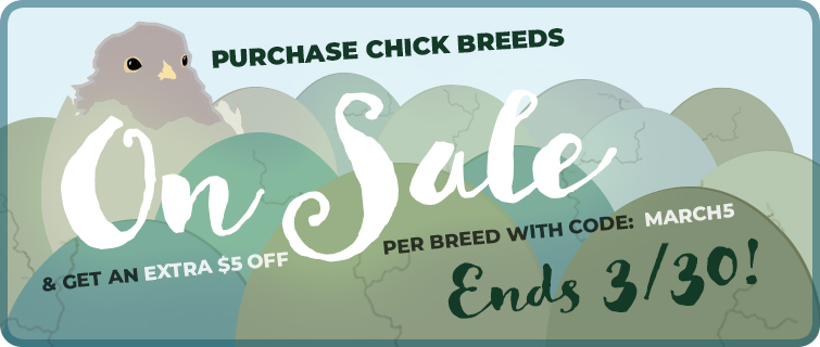 chick sale - save $5 thru 3/30