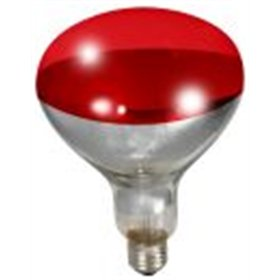 Infrared Heat Lamp Bulb Red From My Pet Chicken