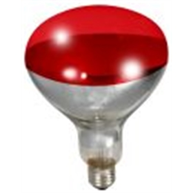 infrared heat lamp bulb red from my pet chicken. Black Bedroom Furniture Sets. Home Design Ideas