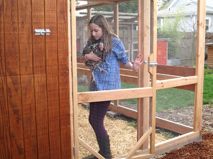 Garden Loft Building Plans Up To 16 Chickens