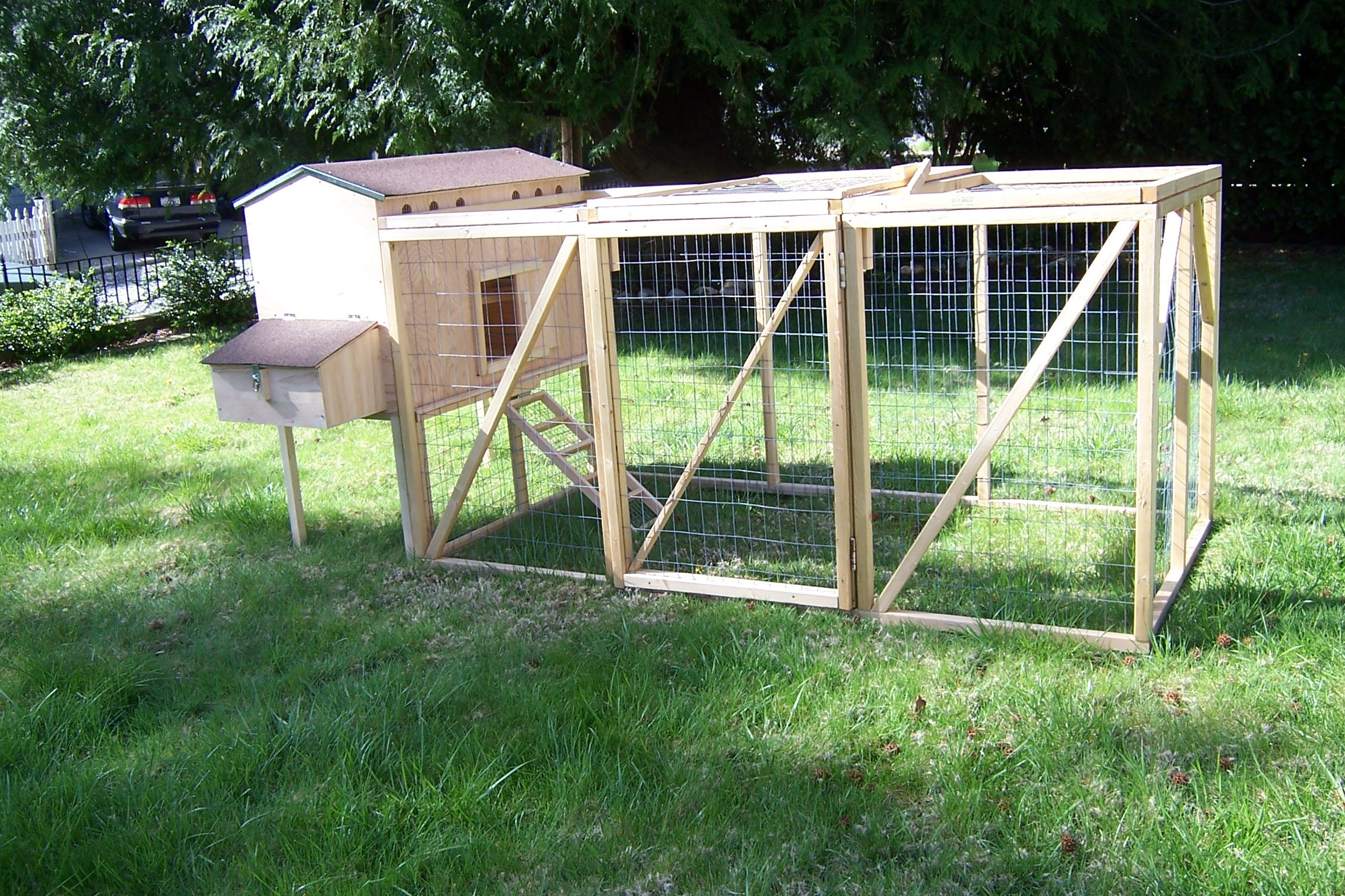 Family hen house diy starter kit 5 6 chickens from my for Chicken coop kits for 12 chickens