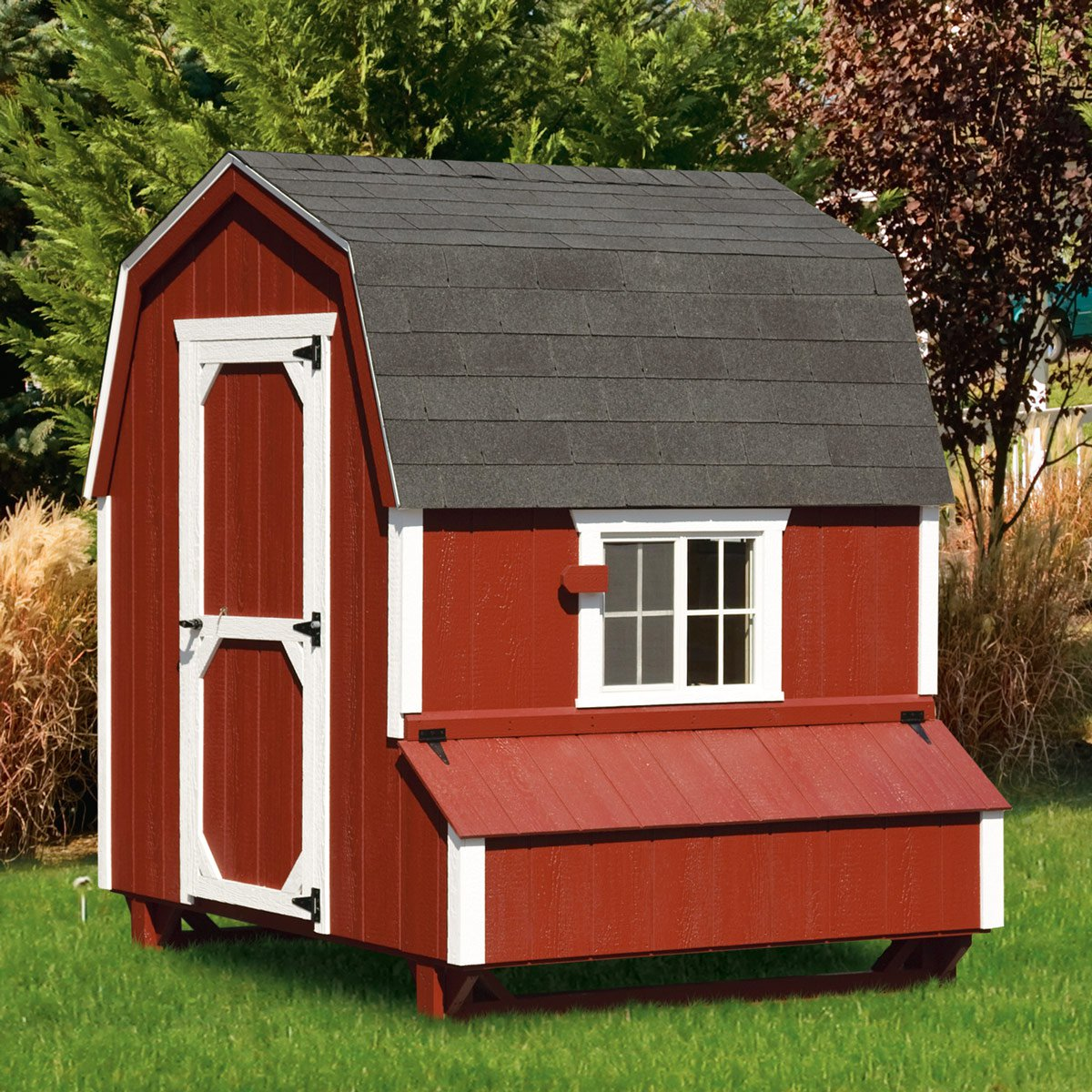 Dutch style 6x6 chicken coop up to 20 chickens from my for Chicken coop size for 6 chickens