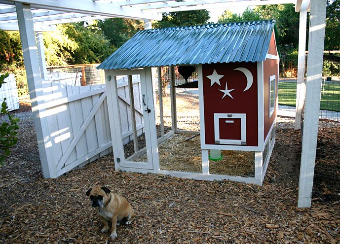 chicken coop plans two sets up to 10 chickens from my