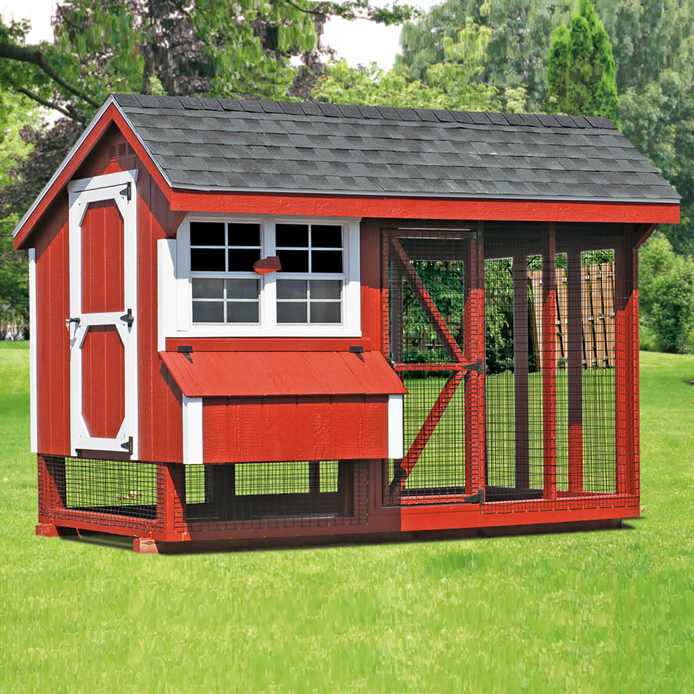 All in one 6x10 chicken coop plus run up to 15 chickens for Chicken coop size for 6 chickens