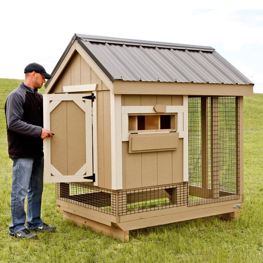 All in one 4x6 chicken coop plus run up to 7 chickens for Chicken coop size for 6 chickens
