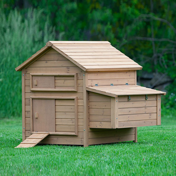 The bungalow chicken coop up to 6 chickens from my pet for Chicken coop size for 6 chickens