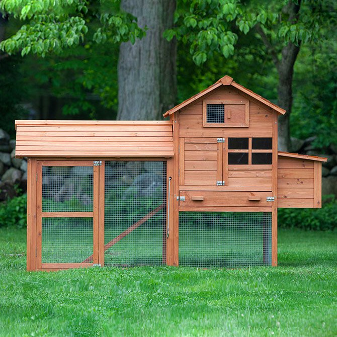 "Chicken House the clubhouse"" coop w/run (up to 4 chickens) from my pet chicken"