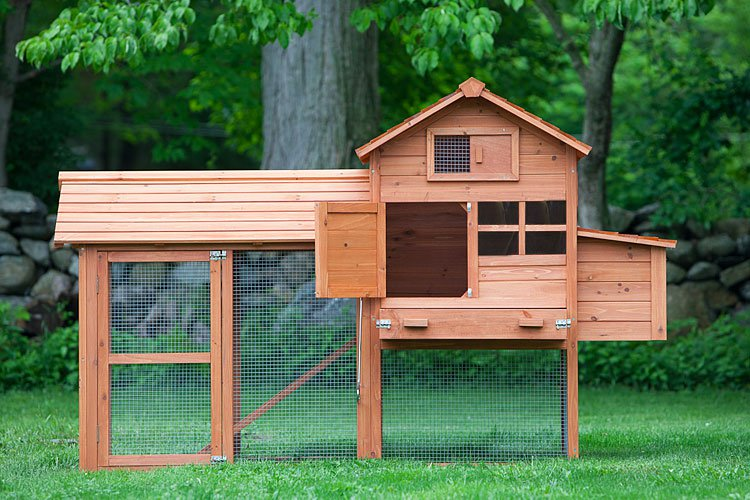 The clubhouse coop w run up to 4 chickens from my pet for Cheap chicken pens for sale
