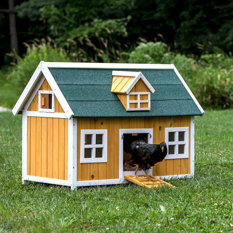 The cottage chicken duck rabbit house 4 chickens from for Chicken and duck coop
