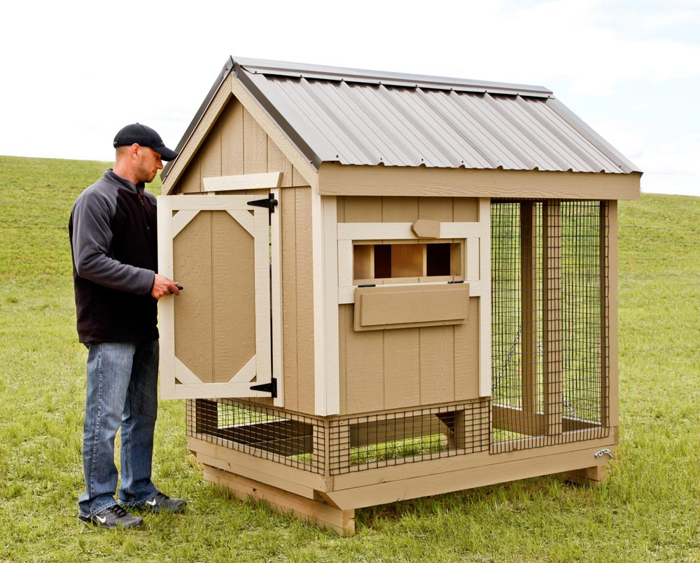 All in one 4x6 chicken coop plus run up to 7 chickens for Chicken run for 6 chickens