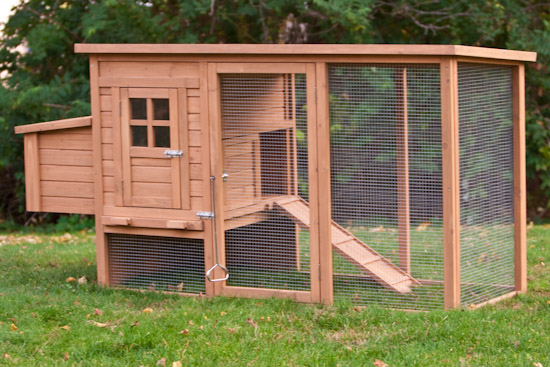 The foursquare coop with run from my pet chicken for Homemade chicken coops for sale