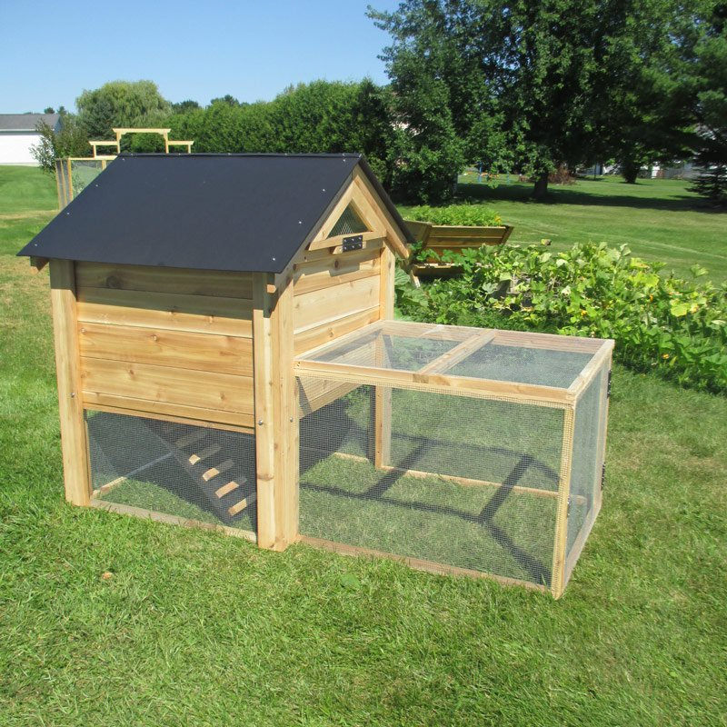 Red cedar backyard coop 4 6 chickens from my pet chicken for Chicken coop size for 6 chickens