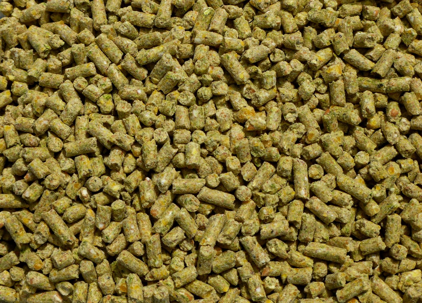Soy Amp Corn Free Organic Layer Feed 50lb From My Pet Chicken