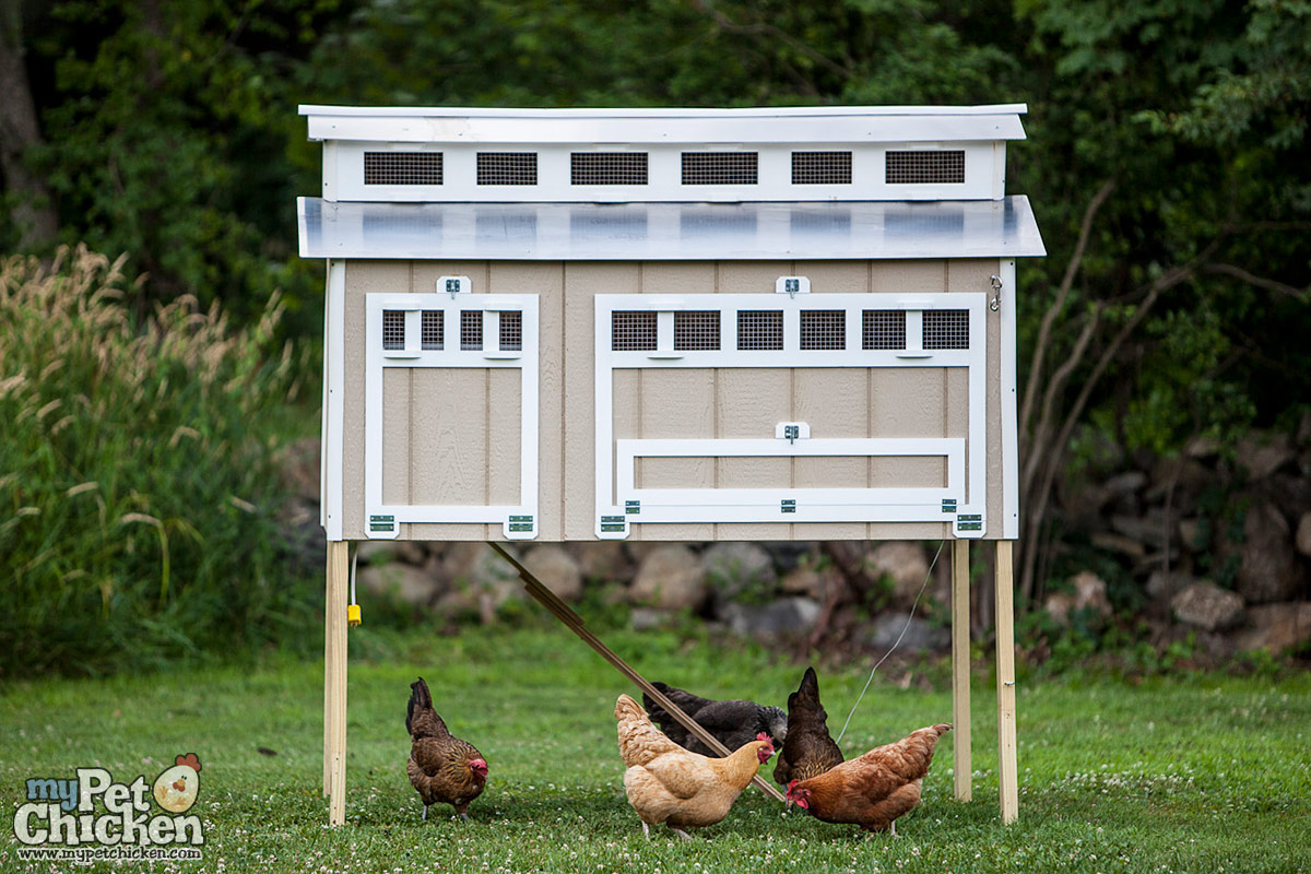 Home product 12 bird chicken coop - Product Features