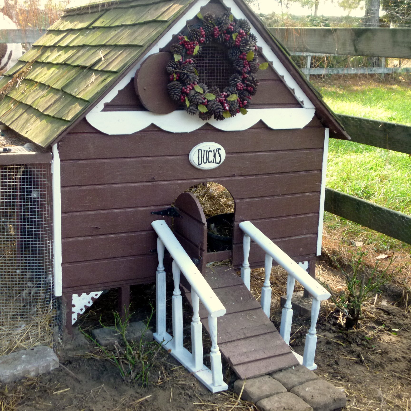 Gingerbread duck house building plans from my pet chicken for Chicken and duck coop