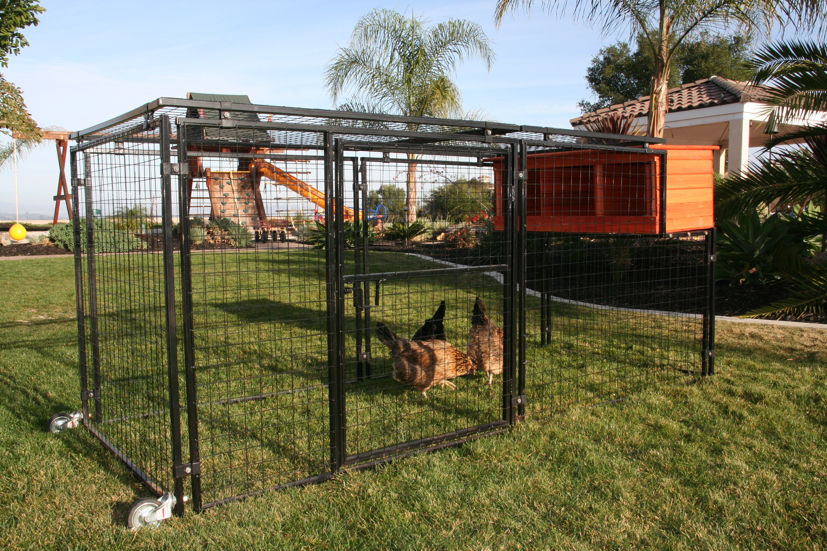 Spring fling mobile chicken yard from my pet chicken for Portable chicken yard