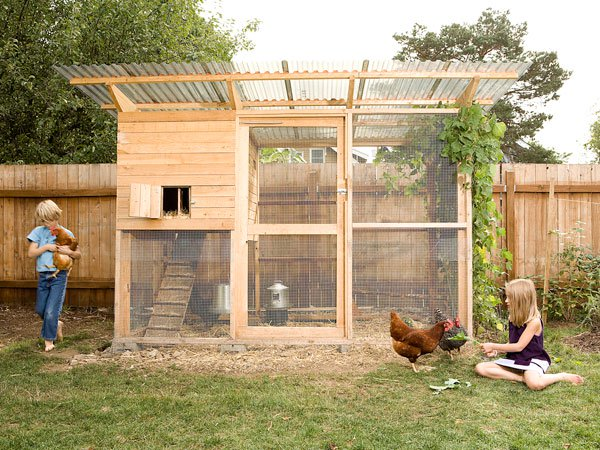 "Garden Coop"" Building Plans (up to 8 chickens)"