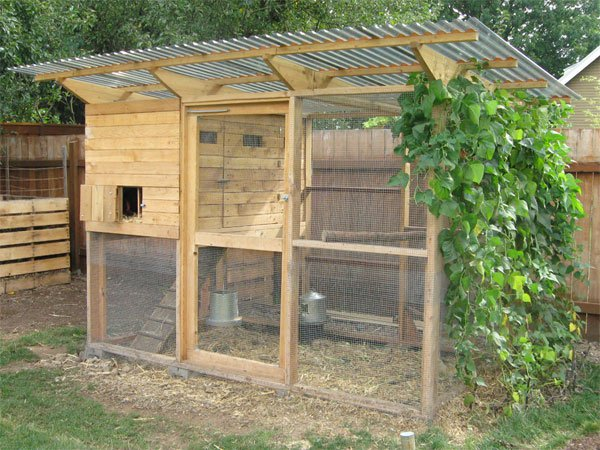 Small chicken coop easy to free quaker style chicken coop for Small chicken house plans