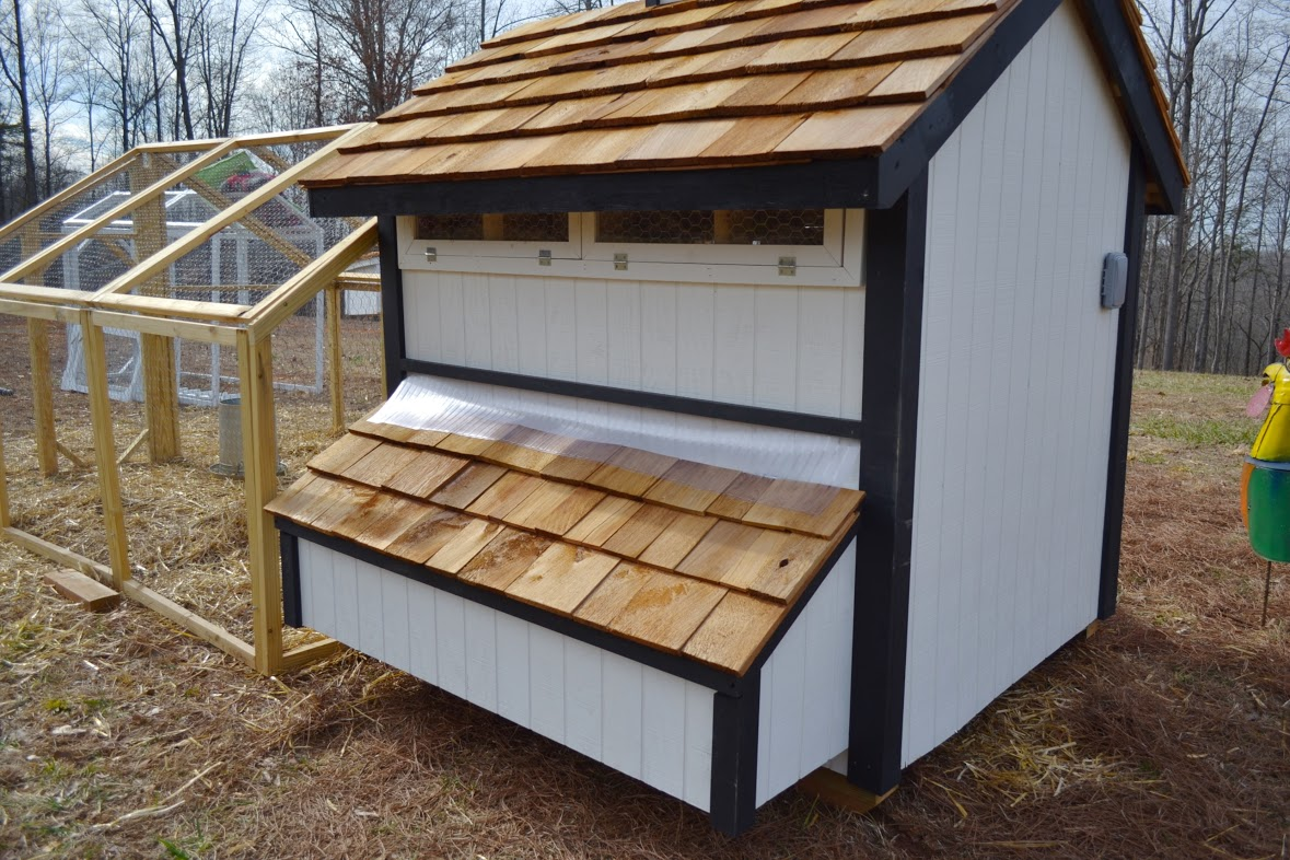 Ventilation For Chickens : Wyandotte chicken coop up to chickens from my pet