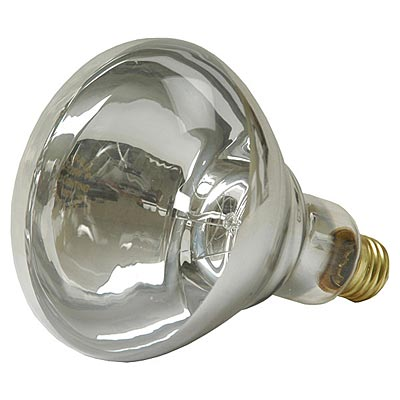 infrared heat lamp bulb white energy saver from my pet chicken. Black Bedroom Furniture Sets. Home Design Ideas