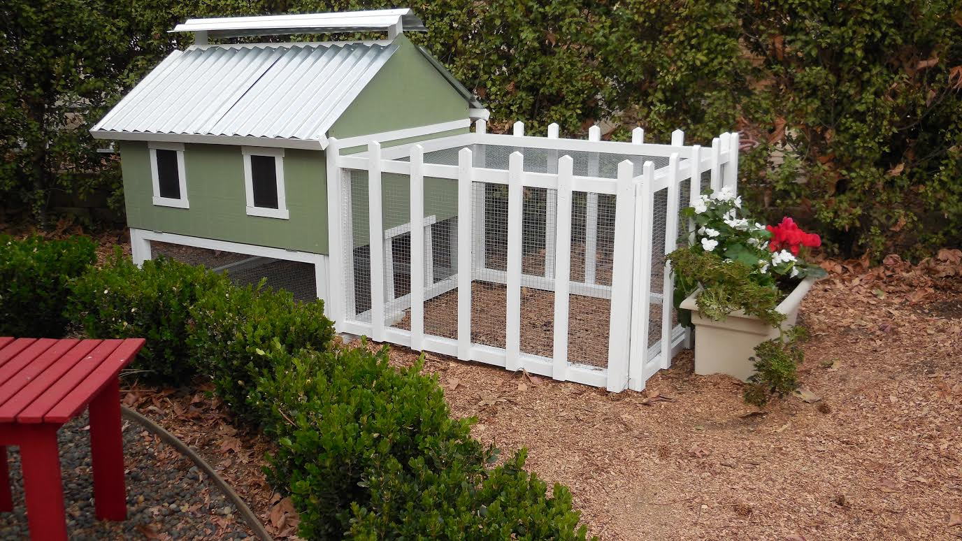 Smart easy clean chicken coop up to 6 chickens from my for Chicken run for 6 chickens