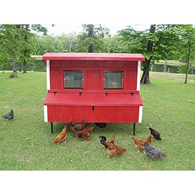 Fiberglass 5' x 8' Coop (Up to 20 Chickens)