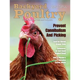 Backyard Poultry Magazine - 1 year subscription