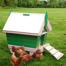 Beach Hutchy Building Plans (Up to 4 chickens)