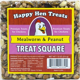 Treat Square, Mealworm & Peanut
