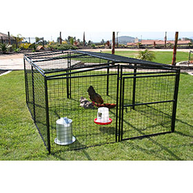 Welded Wire Chicken Yard