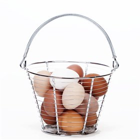 Stainless Wire Egg Basket