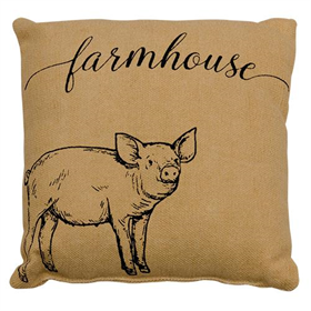 Farmhouse Pillow