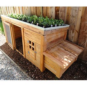 Herb Garden Coop Plans (4 chickens)