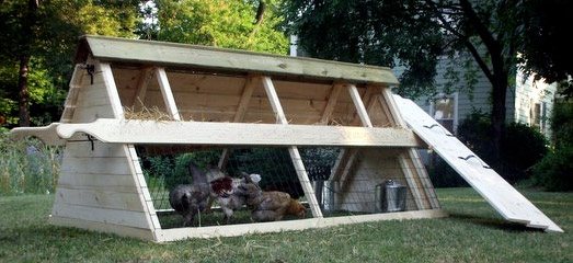 pet chicken tractor, mobile coop for pet chickens