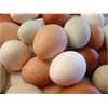 Hatching Eggs - Assortment - Our Best Standards