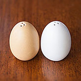 Egg-Shaped Salt & Pepper Shakers