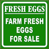 Farm Fresh Eggs Sign